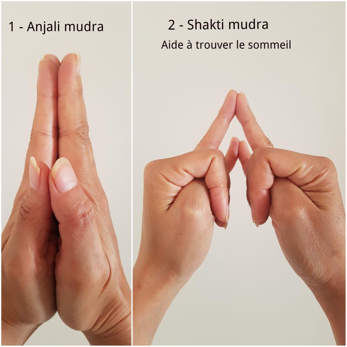Anjali mudra à droite de la photo, et shakti mudra, la déesse de l'énergie
